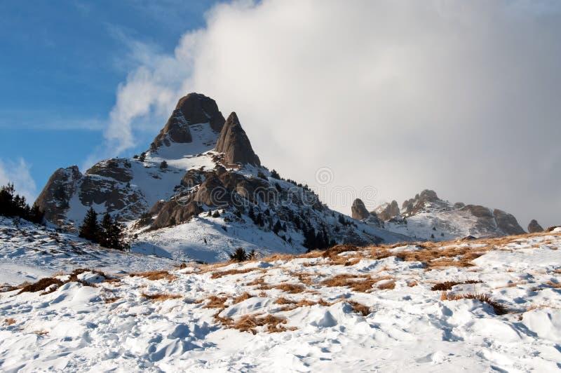 Montanhas de Ciucas fotografia de stock royalty free