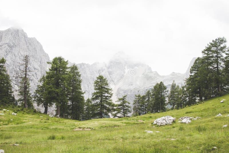 Montanhas de Eslovênia foto de stock