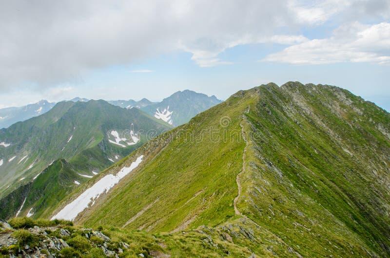 Montanhas de Fagaras, perto do pico de Moldoveanu, a Transilvânia, o Condado de Sibiu, Romênia imagem de stock