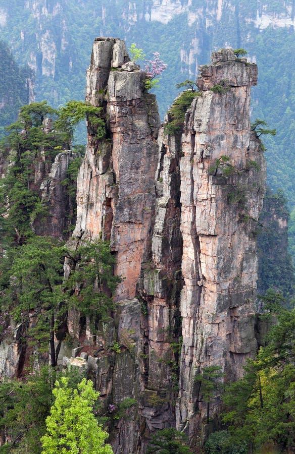 Montanhas de flutuação do Avatar em Zhangjiajie Forest Park nacional, China imagem de stock
