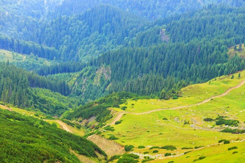 Montanhas de Parang, Romênia imagens de stock royalty free