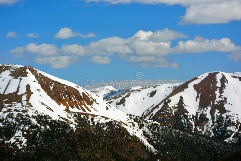 Montanhas de pedra cobertos de neve com os pinheiros em mais baixas elevações imagens de stock royalty free