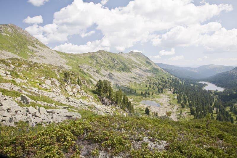 Montanhas de Sayansk. Rússia. imagens de stock