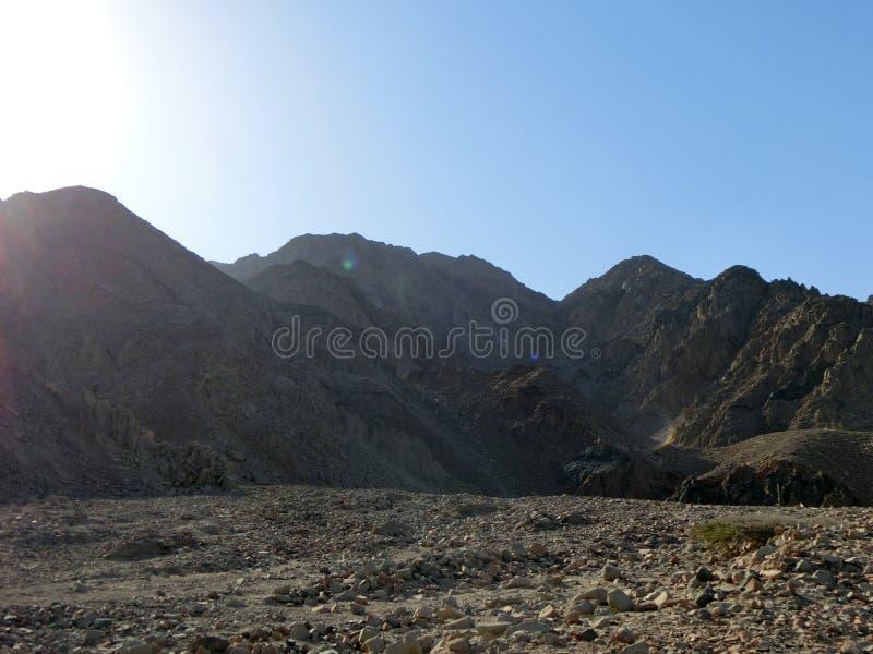 Montanhas de Sinai imagem de stock royalty free