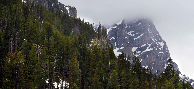 Montanhas de surpresa no parque nacional grande de Teton fotos de stock