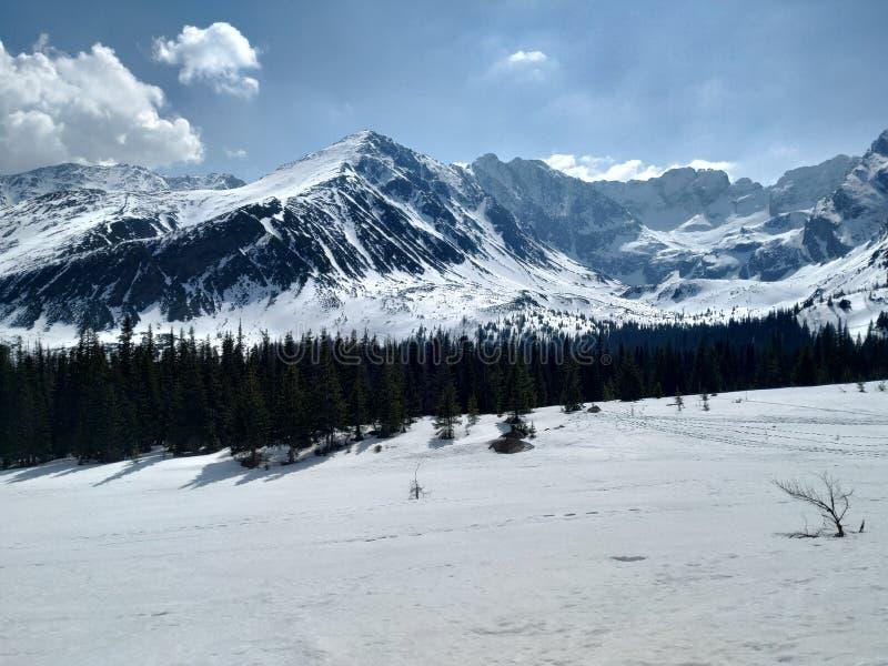 Montanhas de Tatra im sua mola branca e ensolarada fotografia de stock royalty free