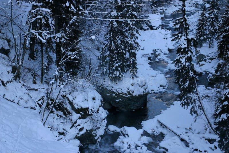 Montanhas do inverno, neve, rio, pedras, floresta, pinho foto de stock
