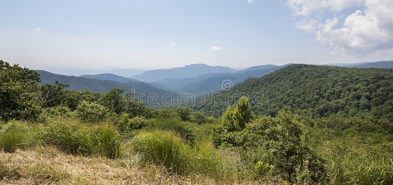 Montanhas do parque nacional de Shenandoah fotografia de stock