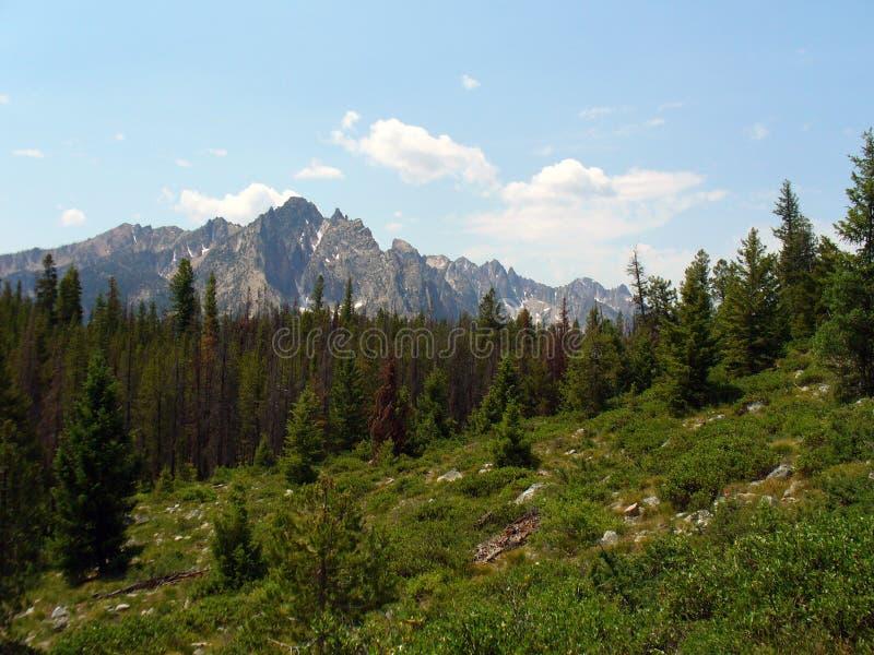 Montanhas do Sawtooth de Idaho fotografia de stock