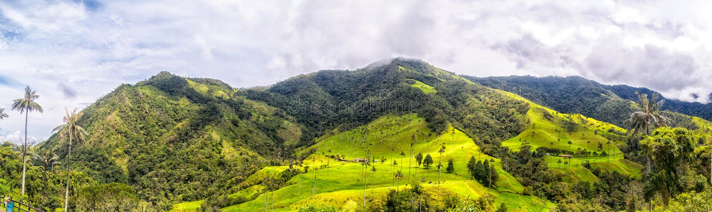 Montanhas do vale de Cocora imagem de stock