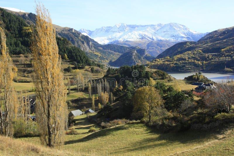 Montanhas e árvores llego do ¡ em Pyrenees, Sallent de gà fotografia de stock