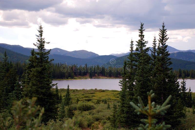 Montanhas e evergreens foto de stock