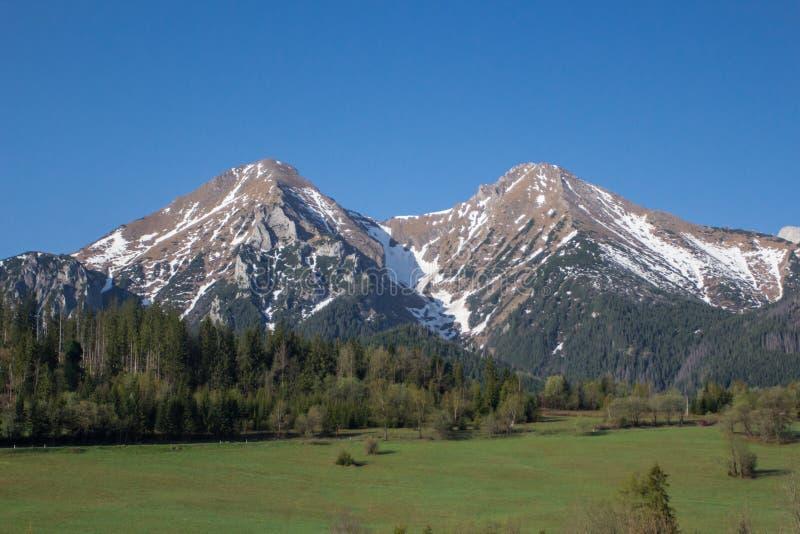 Montanhas elevadas dos tatras, slovakia imagem de stock royalty free