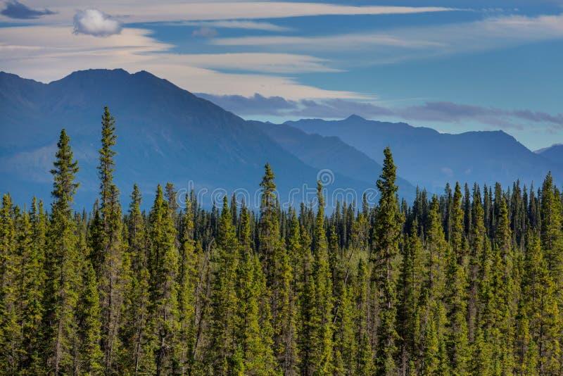 Montanhas em Alaska imagens de stock