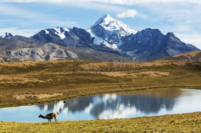 Montanhas em Bolívia fotos de stock