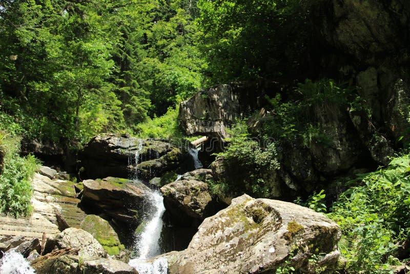 Montanhas em R?ssia ver?o Cachoeira fotografia de stock royalty free