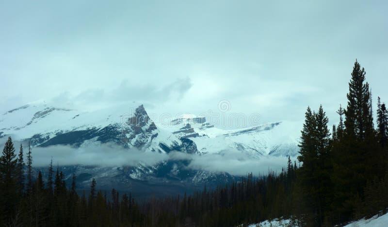 Montanhas encobertas na névoa da manhã fotos de stock