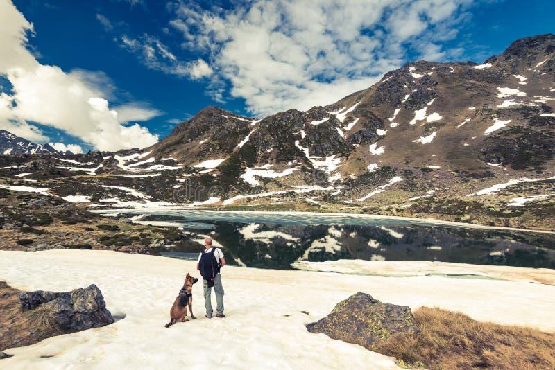 Montanhas, hikker e cão de Adorra foto de stock