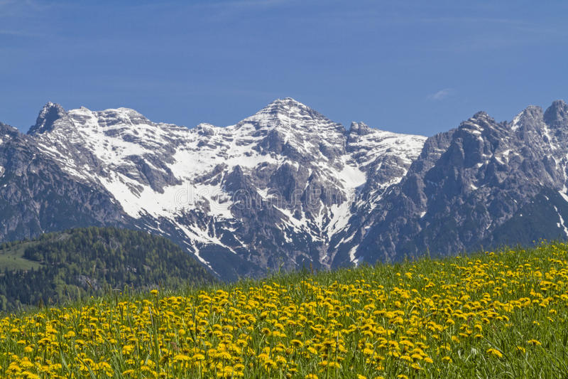 Montanhas Lofer na primavera fotos de stock