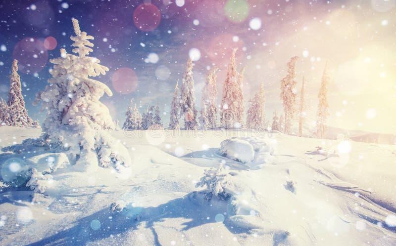 Montanhas majestosas da paisagem misteriosa do inverno ilustração do vetor