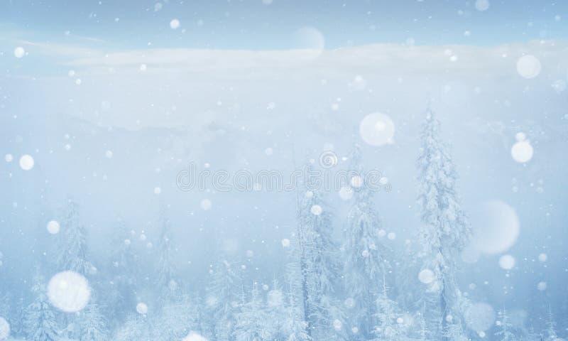 Montanhas majestosas da paisagem misteriosa do inverno no imagem de stock royalty free