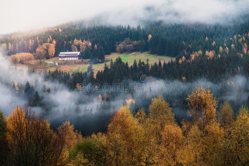 Montanhas nas cores do outono imagens de stock royalty free
