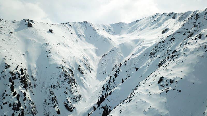 Montanhas nevado de Kazakhstan Abre a vista do desfiladeiro, comeu o crescimento nos montes e a parte superior da montanha fotos de stock