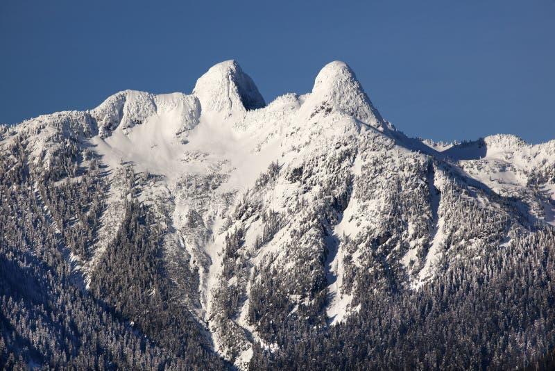 Montanhas nevado dos leões de Vancôver duas BC imagens de stock royalty free