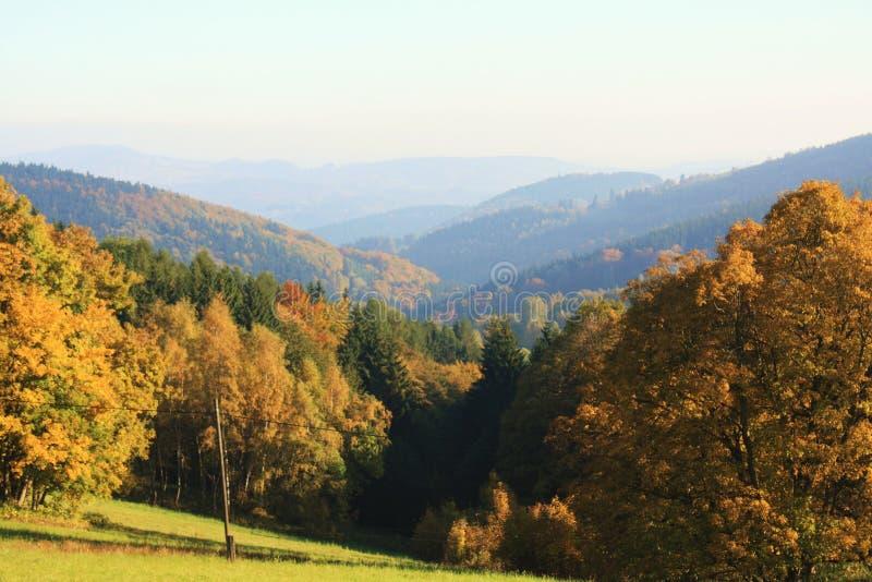 Montanhas nevoentas do outono da manhã fotos de stock