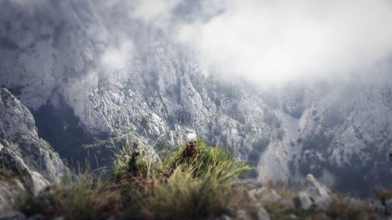Montanhas nevoentas e nebulosas dentro das montanhas de Biokovo na Croácia de Makarska imagens de stock royalty free
