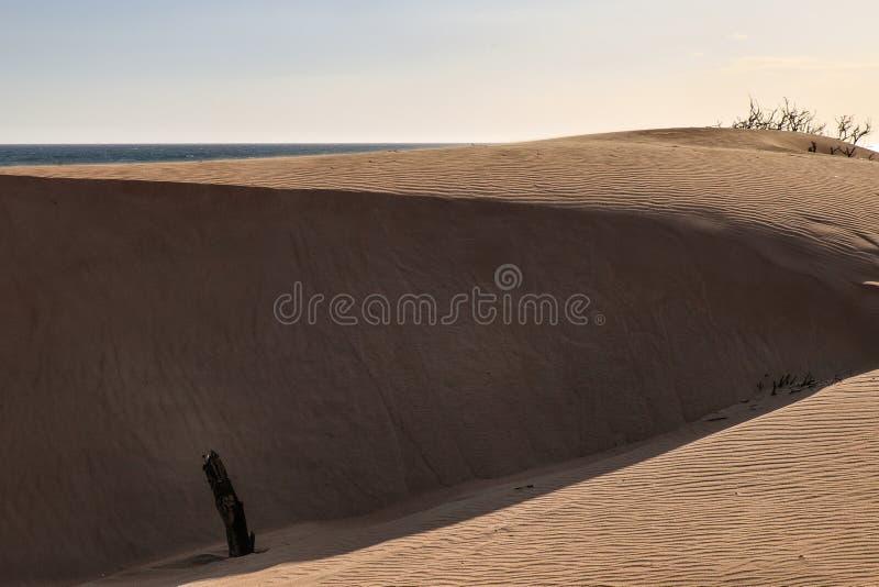 Montanhas no deserto imagem de stock