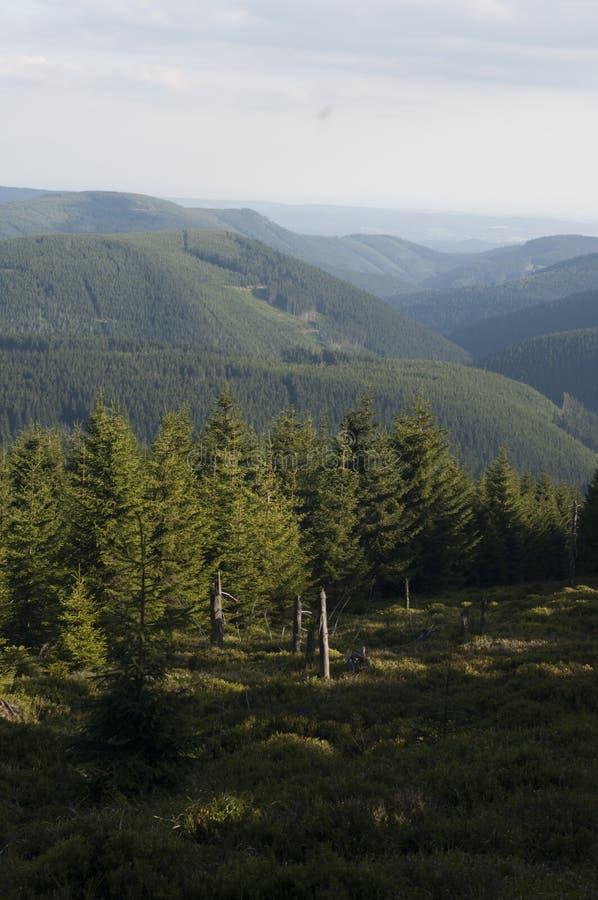 Montanhas no Polônia - Karkonosze fotos de stock royalty free
