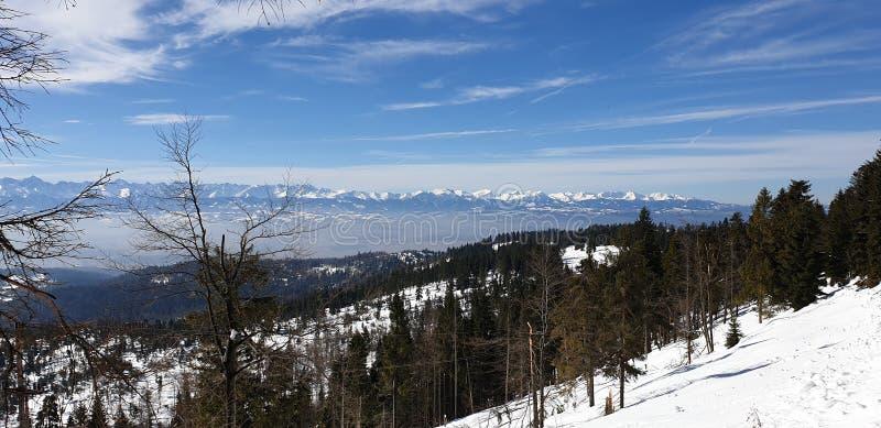 Montanhas no tempo de inverno do Pol?nia fotos de stock royalty free