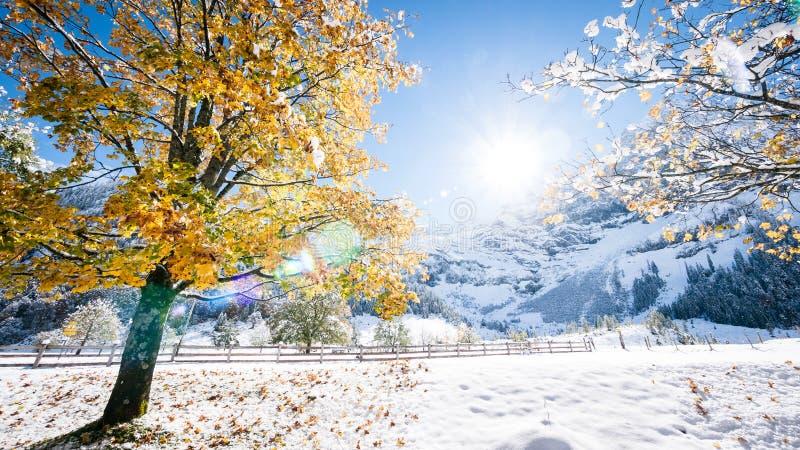 Download Karwendel foto de stock. Imagem de azul, horizontal, cena - 29842656