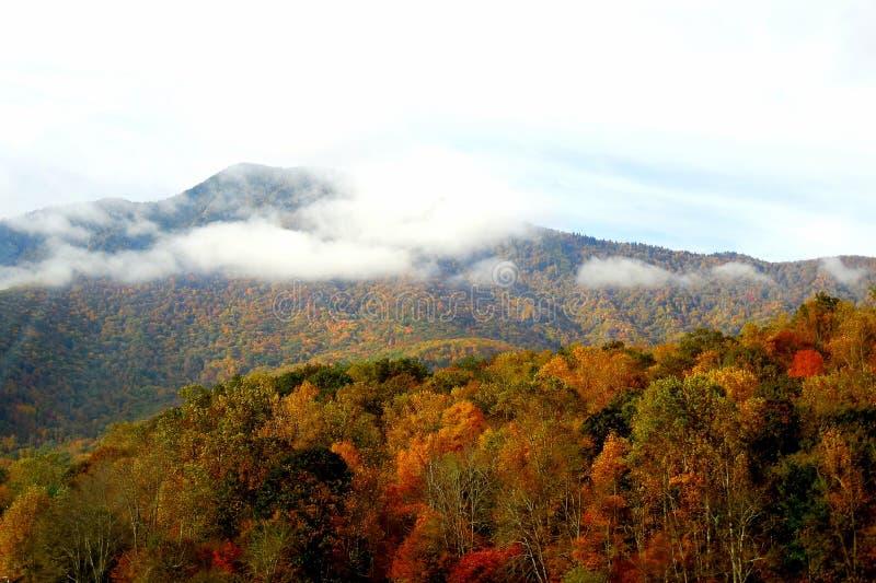 Montanhas nortes de Carolina Appalachian na queda fotografia de stock