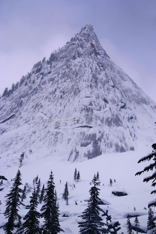 Montanhas ocidentais de Sayan. fotos de stock