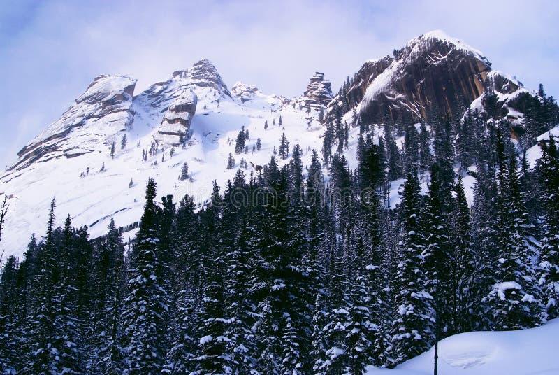 Montanhas ocidentais de Sayan. imagens de stock