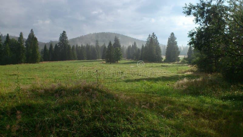 Montanhas ocidentais de Tatras fotografia de stock royalty free