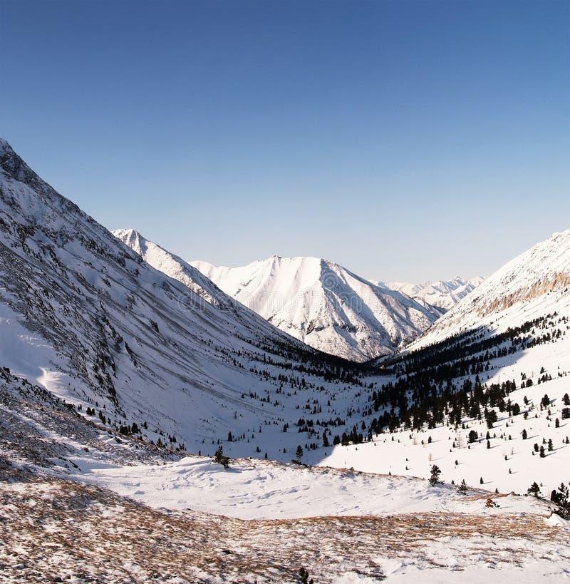 Montanhas orientais de Sayan. Altai. imagens de stock