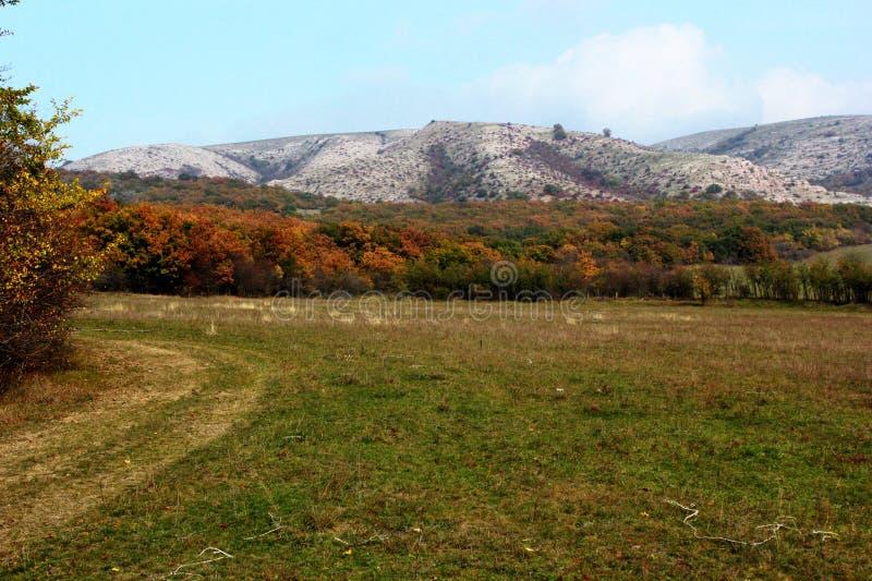 Montanhas, prado e campo, cores do outono da floresta foto de stock royalty free
