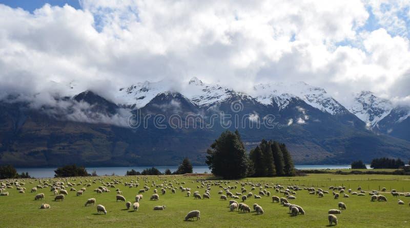 Montanhas, rios, nuvens & carneiros imagens de stock