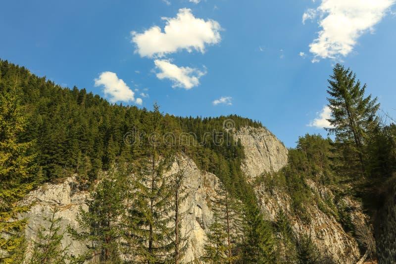 Montanhas rochosas - Bicaz - Romênia fotografia de stock royalty free