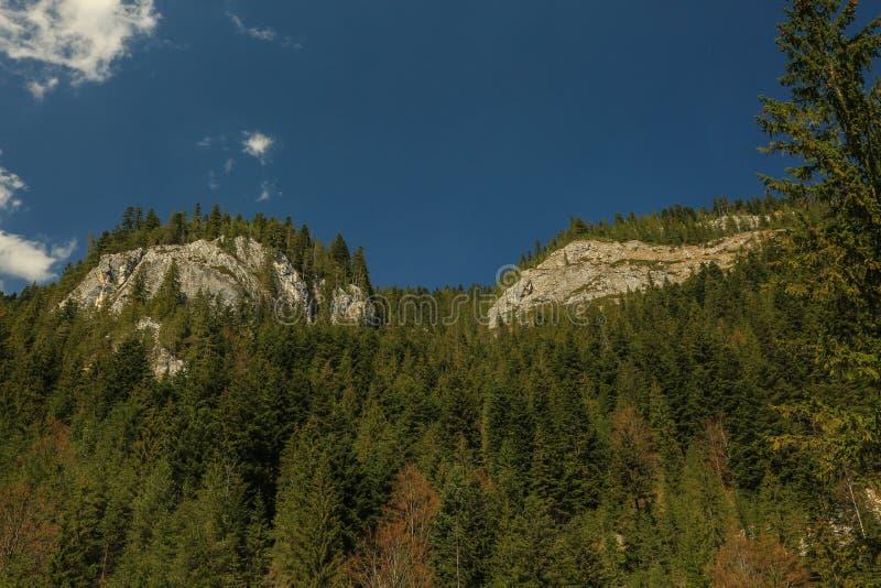 Montanhas rochosas - Bicaz - Romênia fotos de stock