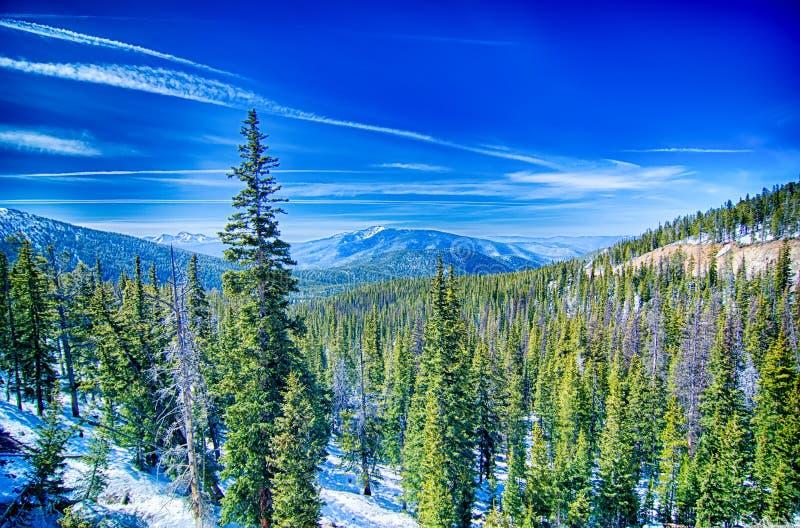 Montanhas rochosas de Colorado perto da passagem do monarca fotografia de stock