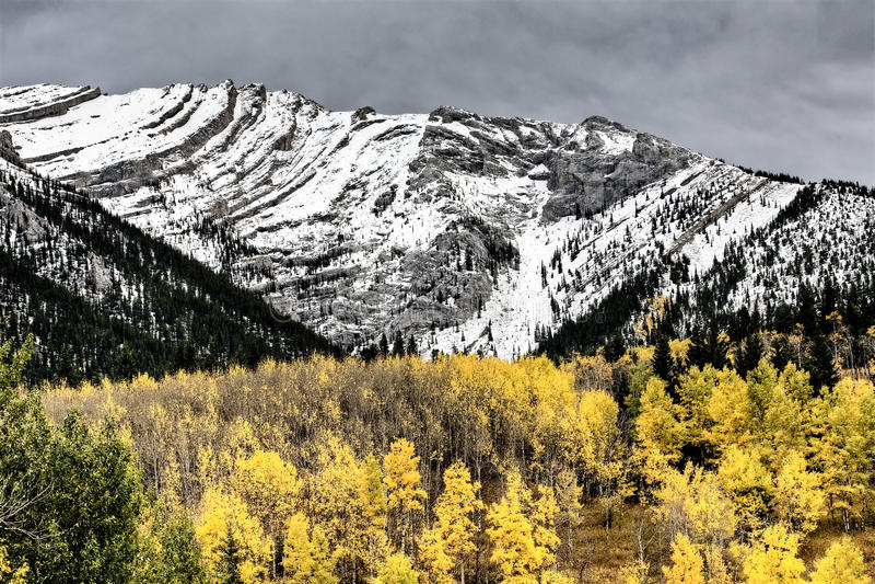 Montanhas rochosas Kananaskis Alberta fotos de stock