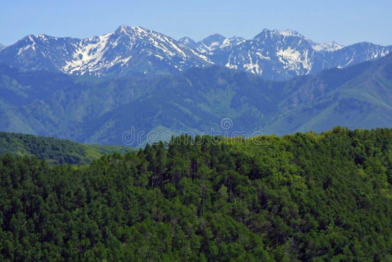 Download Montanhas Rochosas Que Esticam Na Distância Foto de Stock - Imagem de monumentos, florestas: 527164