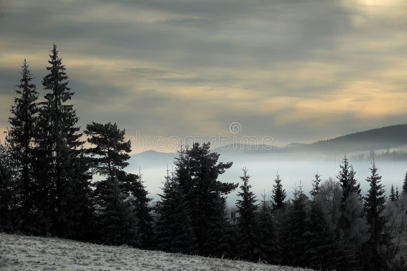 Montanhas romenas em uma tarde nevoenta imagem de stock