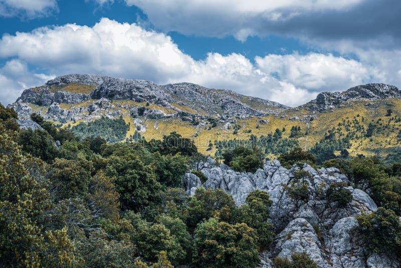 Montanhas Sierra de Tramuntana na ilha de Maiorca imagens de stock