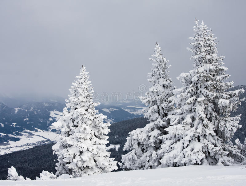 Montanhas sob a neve. Áustria fotos de stock