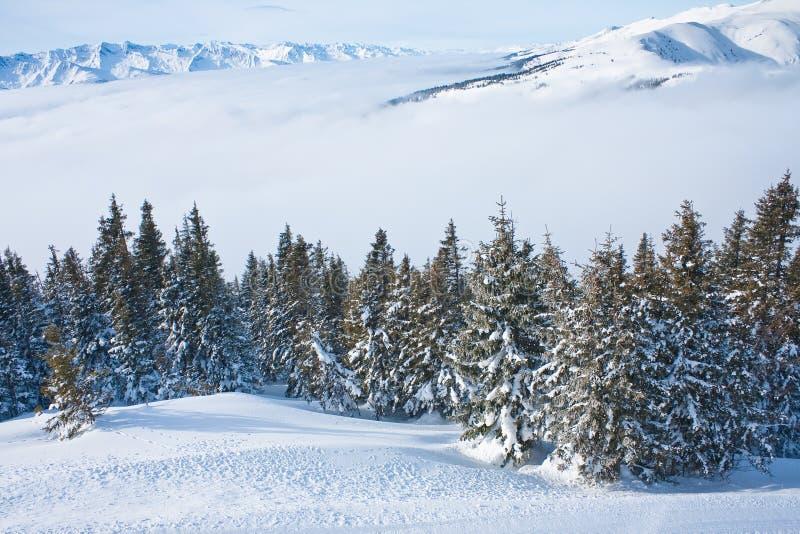 Montanhas sob a neve imagens de stock